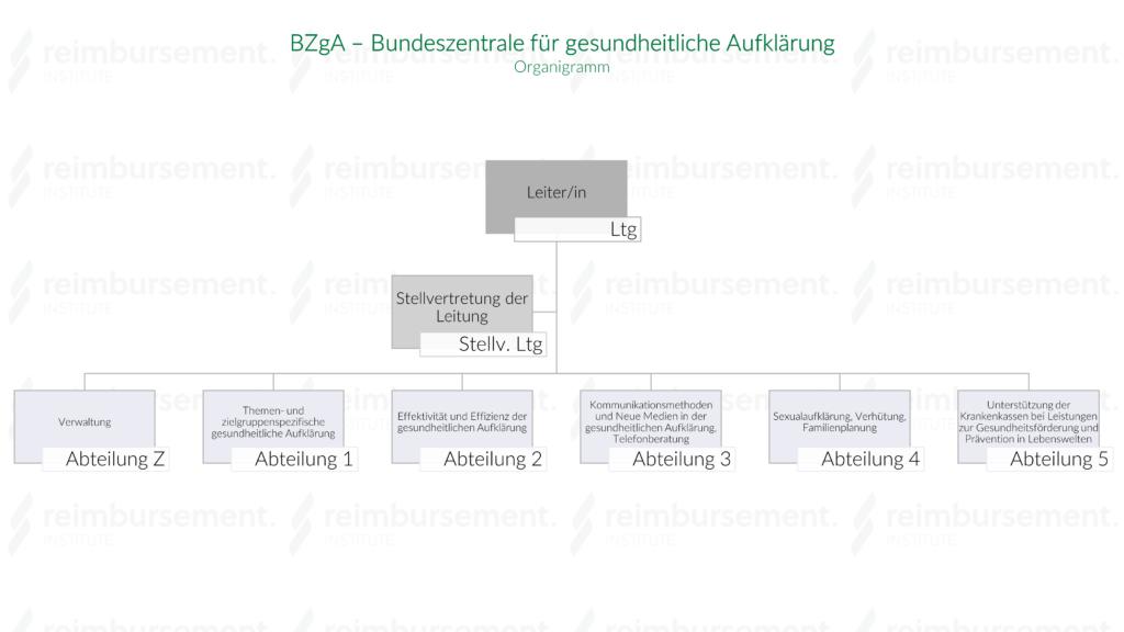 Darstellung des Organigramms der Bundeszentrale für gesundheitliche Aufklärung (BZgA)