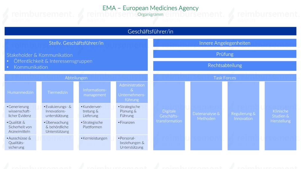 Darstellung des Organigramms der European Medicines Agency (EMA)